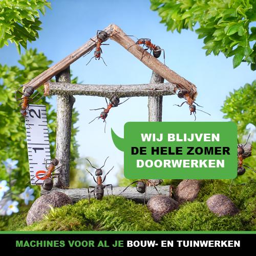 2021_mieren_Zomer_websiteNL1.jpg